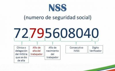¿Cómo obtener por ti mismo tu RFC y Número de Seguridad Social (NSS)?
