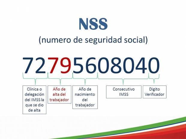 ¿Cómo obtener por ti mismo tu RFC y Número de Seguridad Social (NSS)? (para Personas Físicas)